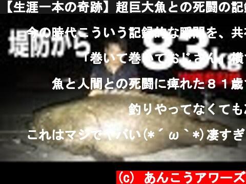 【生涯一本の奇跡】超巨大魚との死闘の記録はこちら(石垣第3夜)  (c) あんこうアワーズ