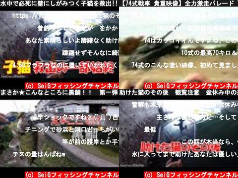 SeiGフィッシングチャンネル(おすすめch紹介)