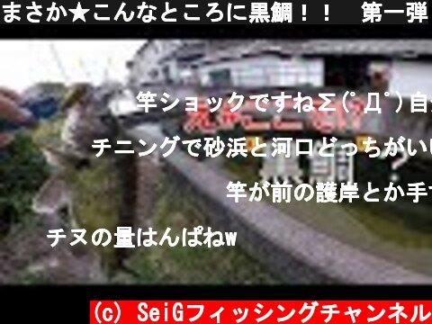 まさか★こんなところに黒鯛!! 第一弾  (c) SeiGフィッシングチャンネル