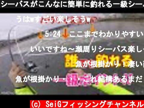 シーバスがこんなに簡単に釣れる一級シーバスポイント★  (c) SeiGフィッシングチャンネル