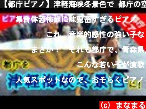 【都庁ピアノ】津軽海峡冬景色で 都庁の空気が変わる!?  (c) まなまる