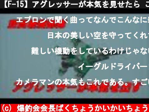 【F-15】アグレッサーが本気を見せたら こういう飛び方になる / JASDF F-15 AGGRESSOR Nyutabaru Air Show 2010  (c) 爆釣会会長ばくちょうかいかいちょう
