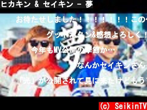 ヒカキン & セイキン - 夢  (c) SeikinTV