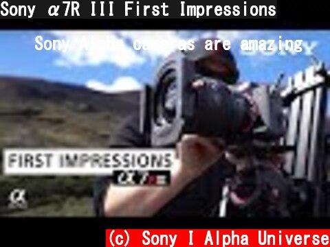 Sony α7R III First Impressions  (c) Sony I Alpha Universe