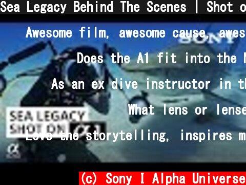 Sea Legacy Behind The Scenes   Shot on Sony Alpha 1  (c) Sony I Alpha Universe
