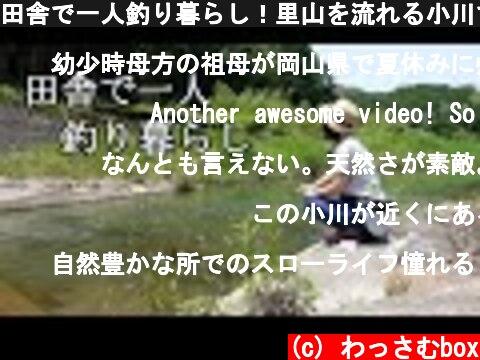 田舎で一人釣り暮らし!里山を流れる小川で釣りをして遊ぶ!  (c) わっさむbox