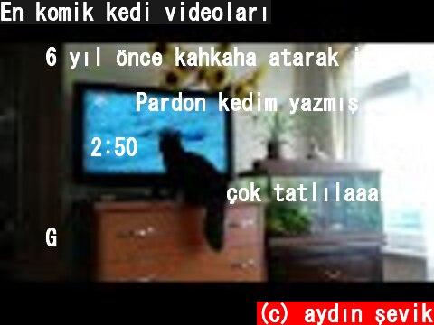 En komik kedi videoları  (c) aydın şevik