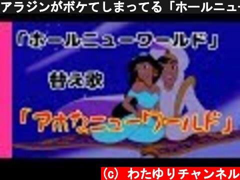 アラジンがボケてしまってる「ホールニューワールド」ディズニー替え歌【カップルで歌ってみた】  (c) わたゆりチャンネル
