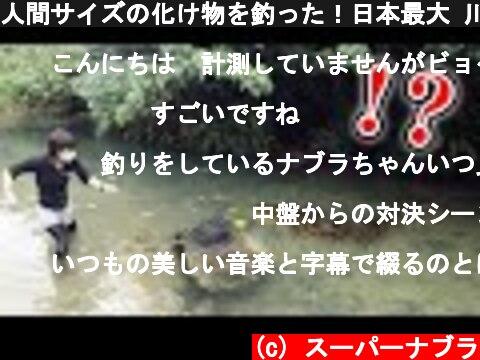 人間サイズの化け物を釣った!日本最大 川の主 4K supernabura  (c) スーパーナブラ
