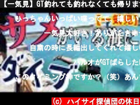 【一気見】GT釣れても釣れなくても帰ります!in石垣島  (c) ハイサイ探偵団の休日