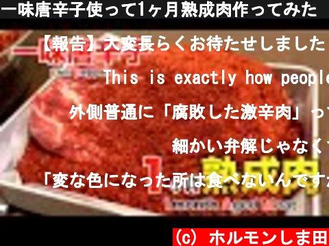 一味唐辛子使って1ヶ月熟成肉作ってみた Insane Chili pepper Dry Age Experiment!!  (c) ホルモンしま田