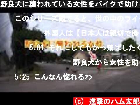野良犬に襲われている女性をバイクで助けるライダー現る!! グッドライダー動画集 【交通安全啓発】  (c) 進撃のハム太郎
