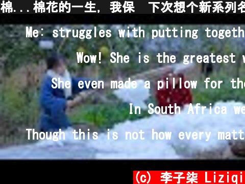 棉...棉花的一生,我保证下次想个新系列名字哈哈哈 The Purpose of Cotton丨Liziqi Channel  (c) 李子柒 Liziqi