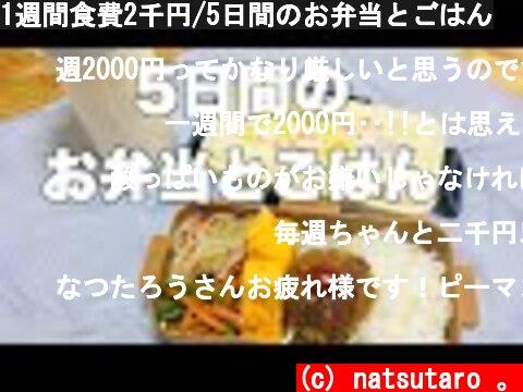 1週間食費2千円/5日間のお弁当とごはん  (c) natsutaro 。