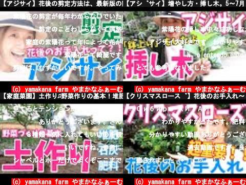 yamakana farm やまかなふぁーむ(おすすめch紹介)
