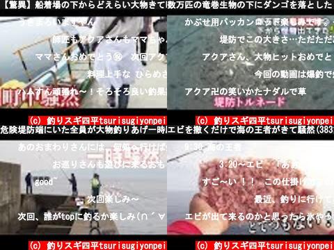 釣りスギ四平tsurisugiyonpei(おすすめch紹介)
