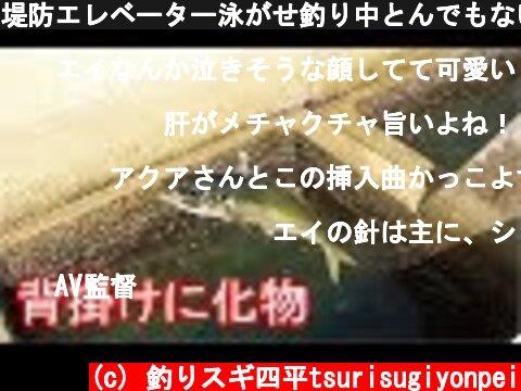 堤防エレベーター泳がせ釣り中とんでもない生物と遭遇(398話目)  (c) 釣りスギ四平tsurisugiyonpei