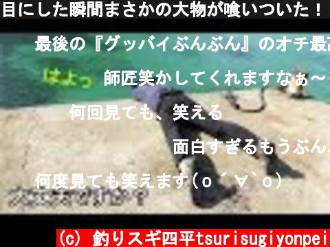 目にした瞬間まさかの大物が喰いついた!「さよならハローぶんぶん」(345話目)  (c) 釣りスギ四平tsurisugiyonpei