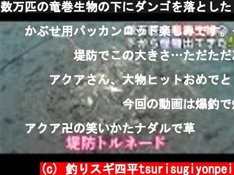 数万匹の竜巻生物の下にダンゴを落としたら怪物が出てきた(470話目)  (c) 釣りスギ四平tsurisugiyonpei