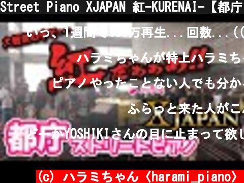 XJAPAN 紅-KURENAI-【都庁ピアノ】ストリートピアノ(おすすめ動画)