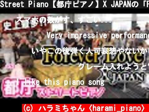 Street Piano【都庁ピアノ】X JAPANの「Forever Love」を弾いて大観衆の都庁に感動を!!【ストリートピアノ】XJAPAN piano cover  (c) ハラミちゃん〈harami_piano〉