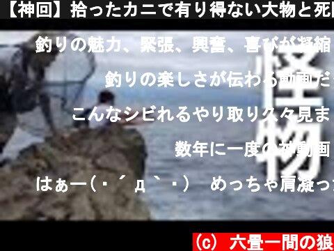 【神回】拾ったカニで有り得ない大物と死闘!!!  (c) 六畳一間の狼