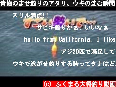 青物のませ釣りのアタリ、ウキの沈む瞬間  (c) ふくまる大将釣り動画