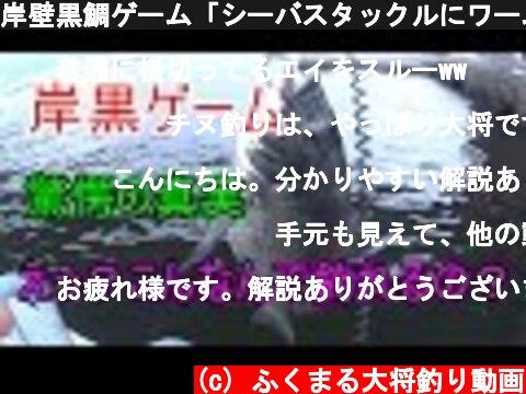 岸壁黒鯛ゲーム「シーバスタックルにワームで落とし込み、ヘチ釣り」  (c) ふくまる大将釣り動画