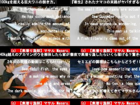 【素潜り漁師】マサル Masaru.(おすすめch紹介)
