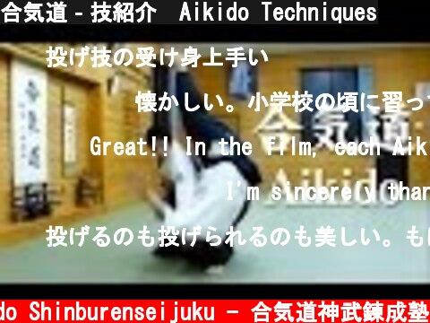 合気道‐技紹介 Aikido Techniques  (c) Aikido Shinburenseijuku - 合気道神武錬成塾