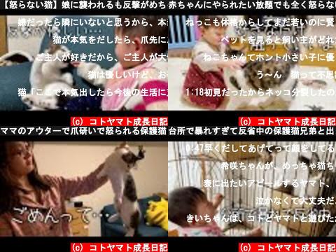 コトヤマト成長日記(おすすめch紹介)