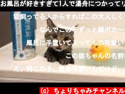 お風呂が好きすぎて1人で湯舟につかってリラックスする猫w  (c) ちょりちゃみチャンネル