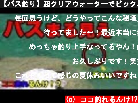 【バス釣り】超クリアウォーターでビックバス見えまくり!  (c) ココ釣れるんけ!?