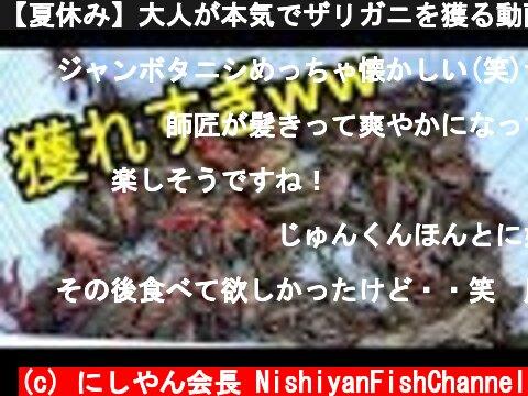【夏休み】大人が本気でザリガニを獲る動画  (c) にしやん会長 NishiyanFishChannel