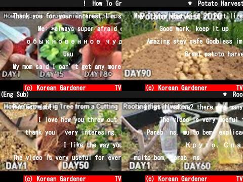 Korean Gardener 초록식물TV(おすすめch紹介)