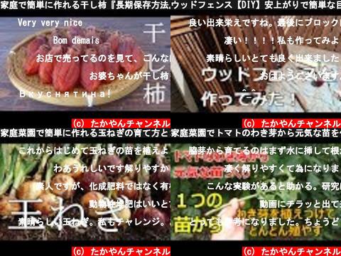 たかやんチャンネル(おすすめch紹介)