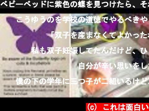ベビーベッドに紫色の蝶を見つけたら、それが何か両親には聞かないで下さい  (c) これは面白い