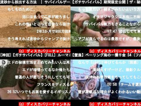 ディスカバリーチャンネル(おすすめch紹介)