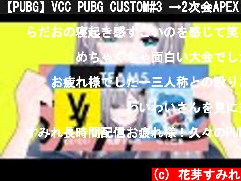 【PUBG】VCC PUBG CUSTOM#3 →2次会APEX【ぶいすぽ / 花芽すみれ】  (c) 花芽すみれ