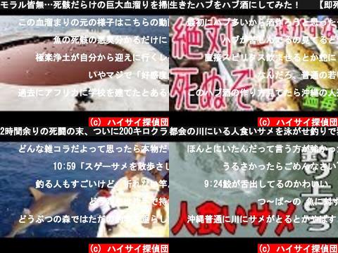 ハイサイ探偵団(おすすめch紹介)