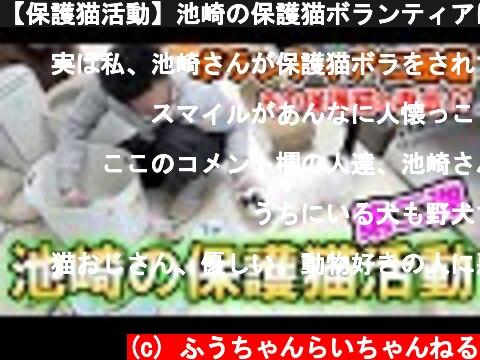 【保護猫活動】池崎の保護猫ボランティアに密着!あのスマイルとも再会!?猫おじさん奮闘記(前編)  (c) ふうちゃんらいちゃんねる