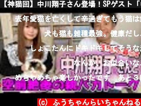 【神猫回】中川翔子さん登場!SPゲスト「中野の猫ババア」の猫愛がやばかった!  (c) ふうちゃんらいちゃんねる